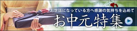 2010お中元